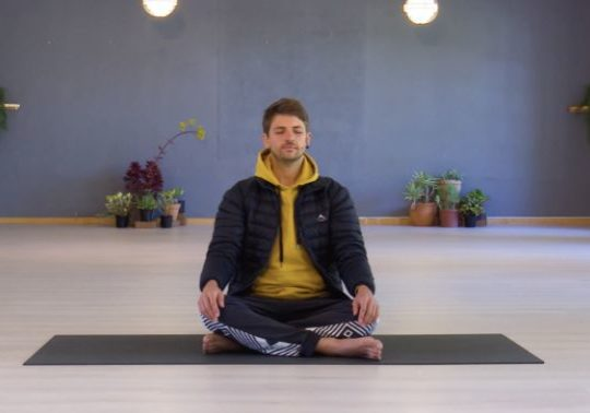 Online Yoga Classes - Yoga Connect